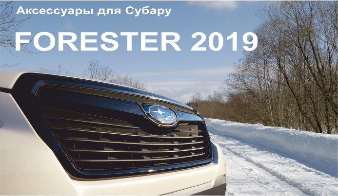 accesoaries forester 2019